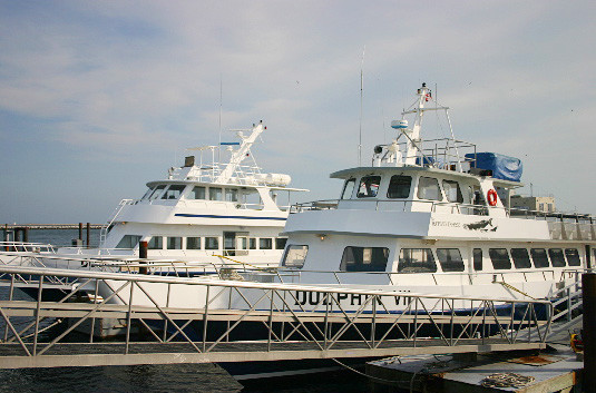 Dolphin Fishing Fleet - Ticket Sales